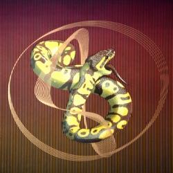 Serpent (lithograph/screen-print)